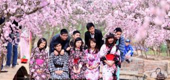 Nếu bạn muốn du học Nhật Bản, hãy chọn 3 ngành nghề này!